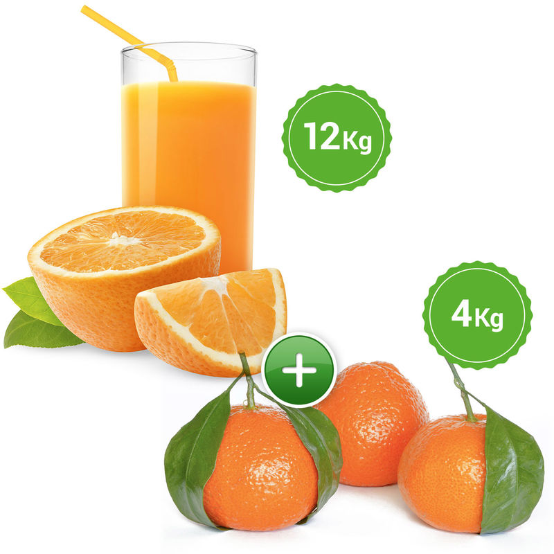 N zumo 12 kg mandarina 4 kg la mejor naranja de - Catalogo mandarina home ...